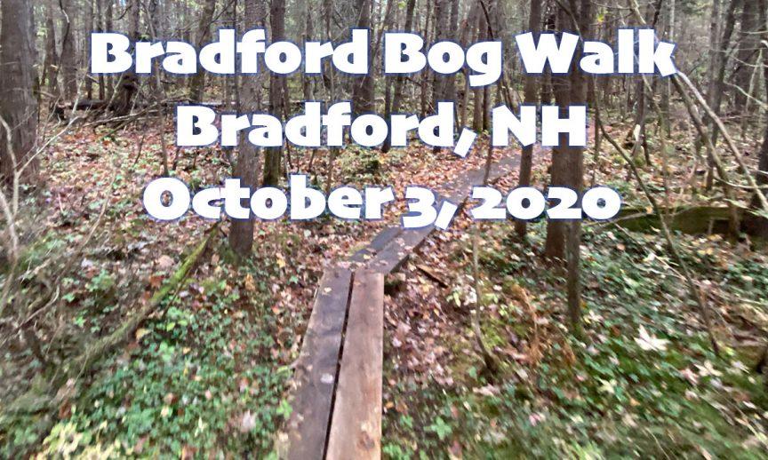 Bradford Bog